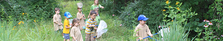 kids walking in a meadow with nets